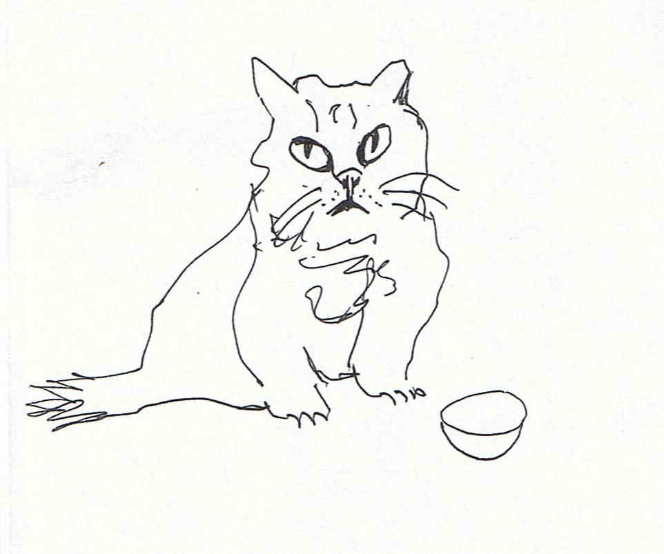 Cat Conundrum 2
