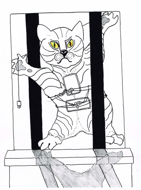 A cat  was apprehended while smuggling two cell phones and two adapters in to a Russian prison.
