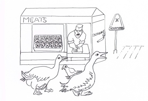 Butchers in Amsterdam are making paté from pigeons killed by pest exterminators