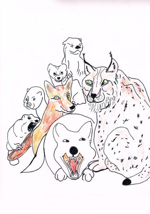 Pappas Furs closes its doors after 100 years. B.C wildlife celebrates.