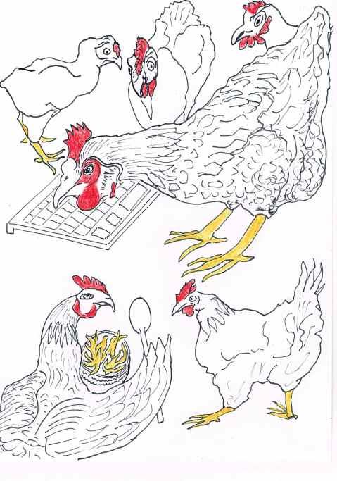 Chicken run; restaurant trains Betty the chicken to run it's twitter account.